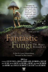 Fantastic Fungi Poster Email Friendly