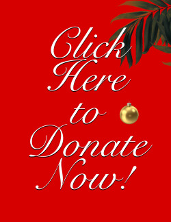 HIlo Days donate now Right